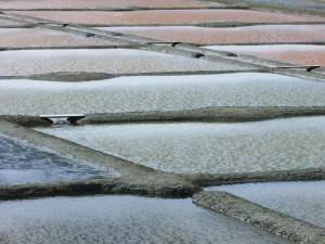 Brittany-salt-pans-at-Guerande